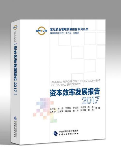 资本效率发展报告2017